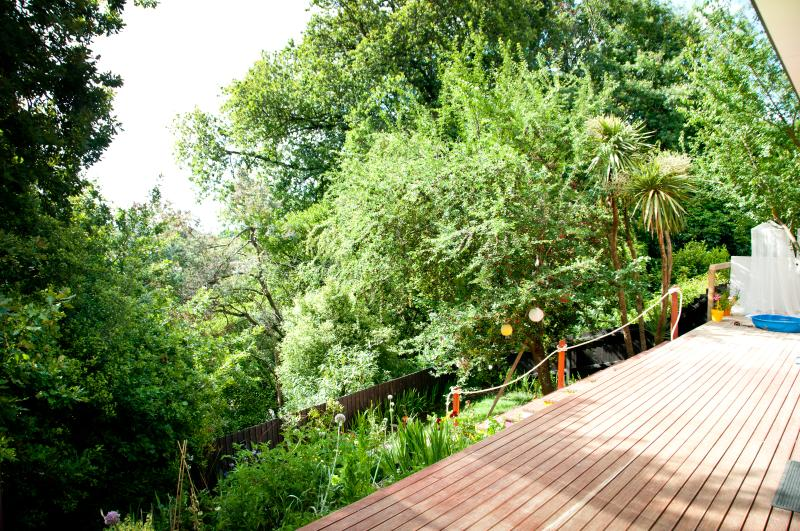 And enjoy these beautiful trees - and realize, this 'treehouse' is really something unique.