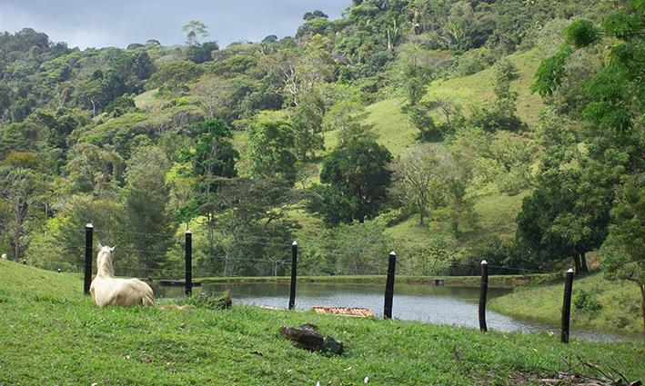 Farmhouse In its own Private  Mountain Valley, location de vacances à Ubaira