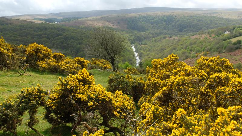 The wilds of Dartmoor are only 10 miles away.