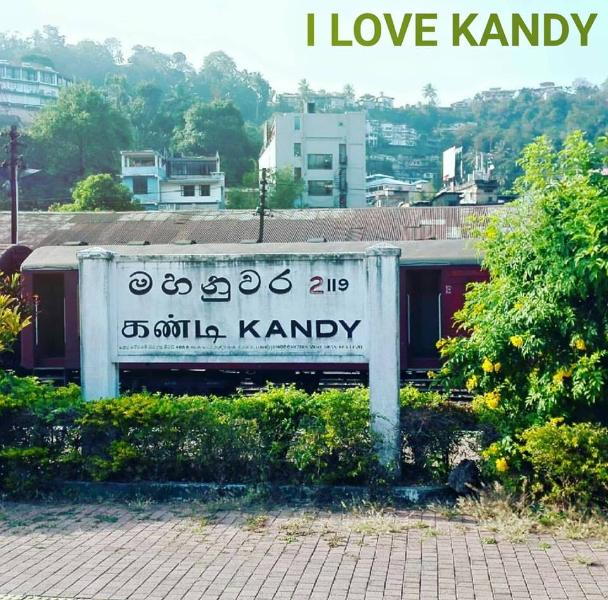 kandy tourist  home, holiday rental in Wattegama