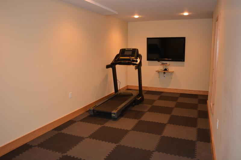 Gym with treadmill and dumbbell sets from 5-30lbs, TV is 55' with Apple TV.