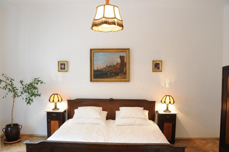 M1 big 2BR apartment near center and major sites, vacation rental in Prague