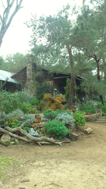 Cowboy style cabin for rent