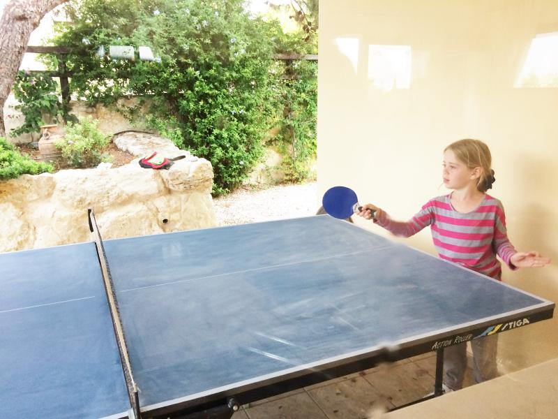 Private table tennis table