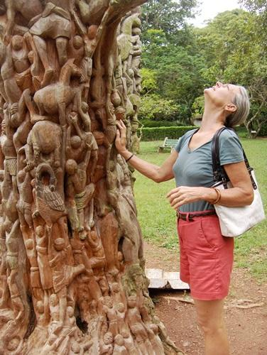 Aburi Botanical Gardens - 20 mins drive from house