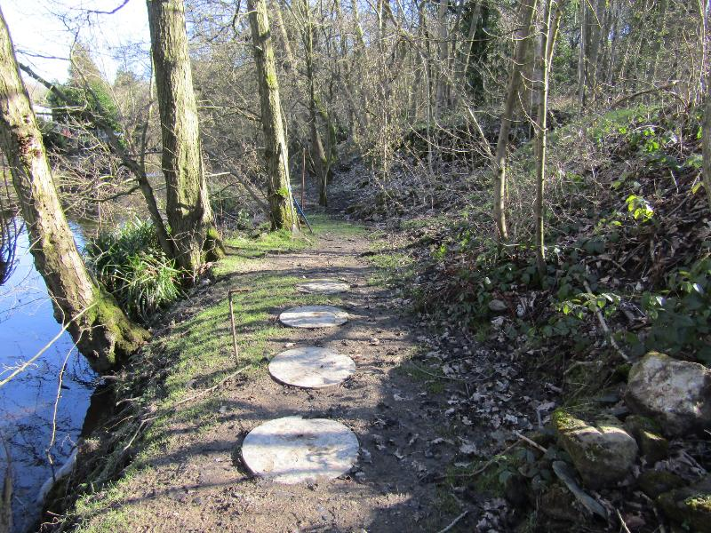 Stepping stones along the riverbank!