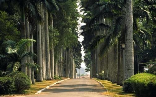 Aburi Gardens - 20 mins drive from property