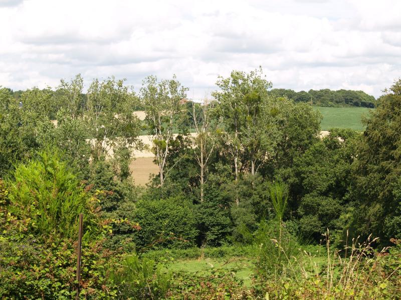 Vue depuis l'arrière de la maison à travers la vallée de la rivière. Parfait pour birdwatching et relaxant