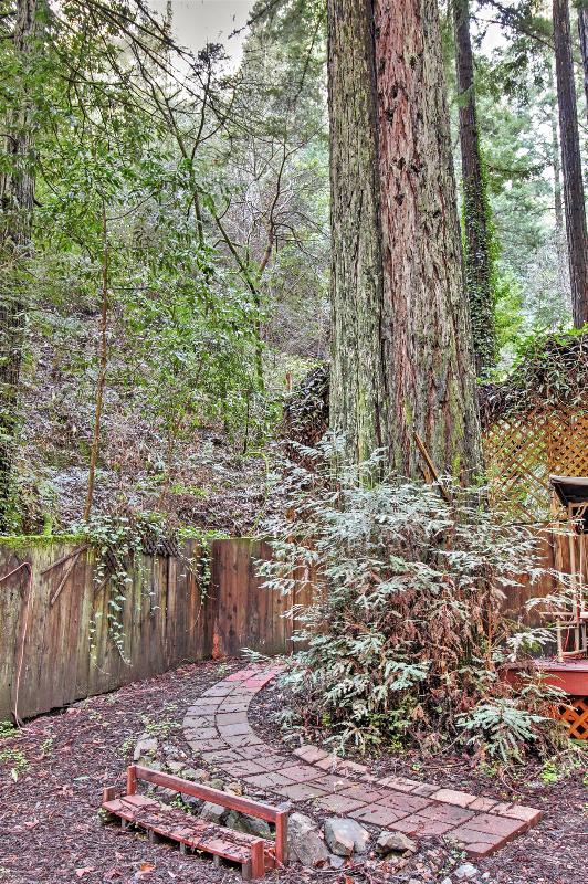 Vous n'aurez pas une pénurie d'incroyables vues sur la forêt de Redwood à admirer!