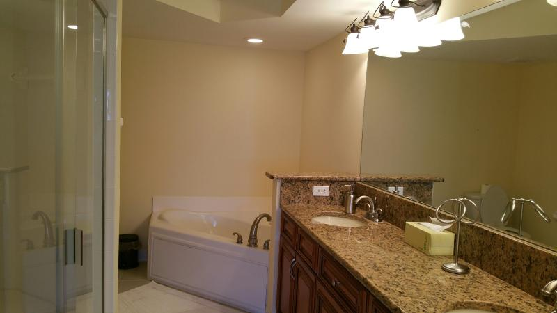 Master Bathroom with a Large Soaking Tub and Walk In Shower