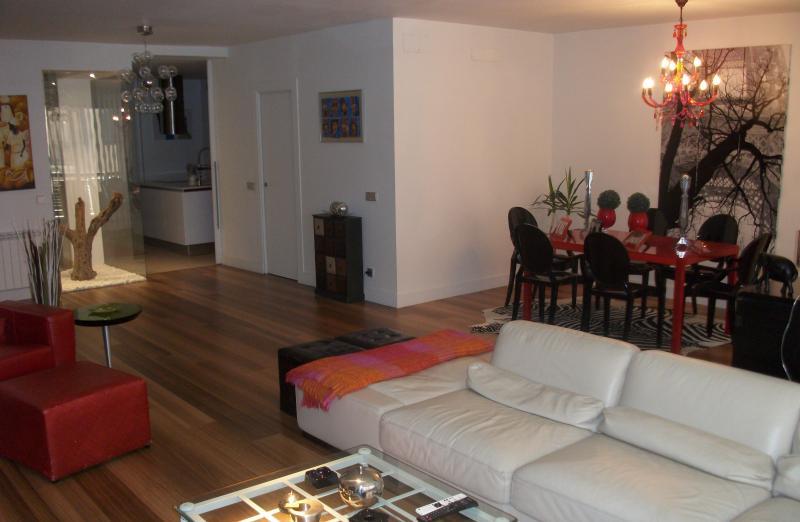 PISO GRANDE DISEÑO MODERNO Y CENTRICO, holiday rental in Logrono