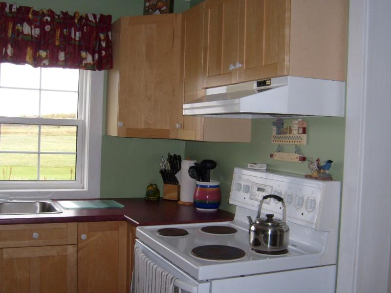 Partial view of large kitchen