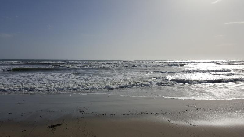 The sea at nearby Elviria beach - a short walk