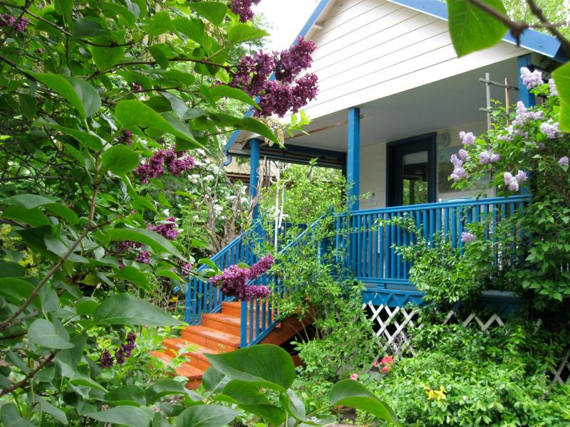 A lovely private  garden surrounds the Hollyhock Guest House