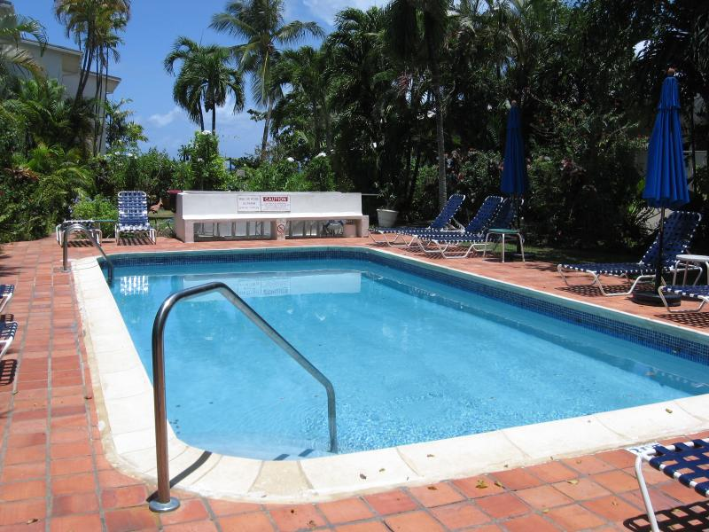 Large well kept fresh water pool with sun loungers & umbrellas