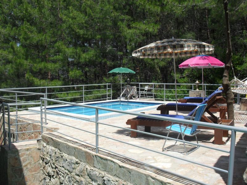 Larger of the two private pools. Just forest all around.