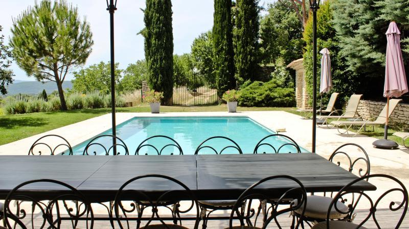 repas en famille ou entre amis devant la piscine ...