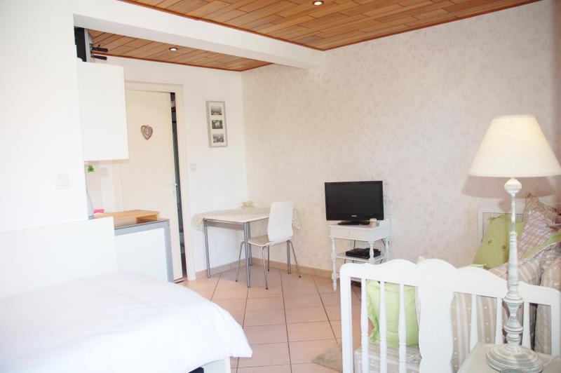Cosy Studio apartment in Ohlungen near Haguenau / Strasbourg, holiday rental in Ohlungen