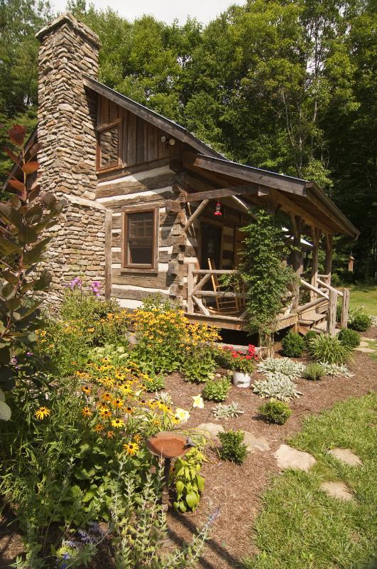 Summer Flowers at Little Creek