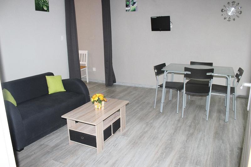GITE BOUCOU APPARTEMENT LOCATION MEUBLE, location de vacances à Eugenie Les Bains