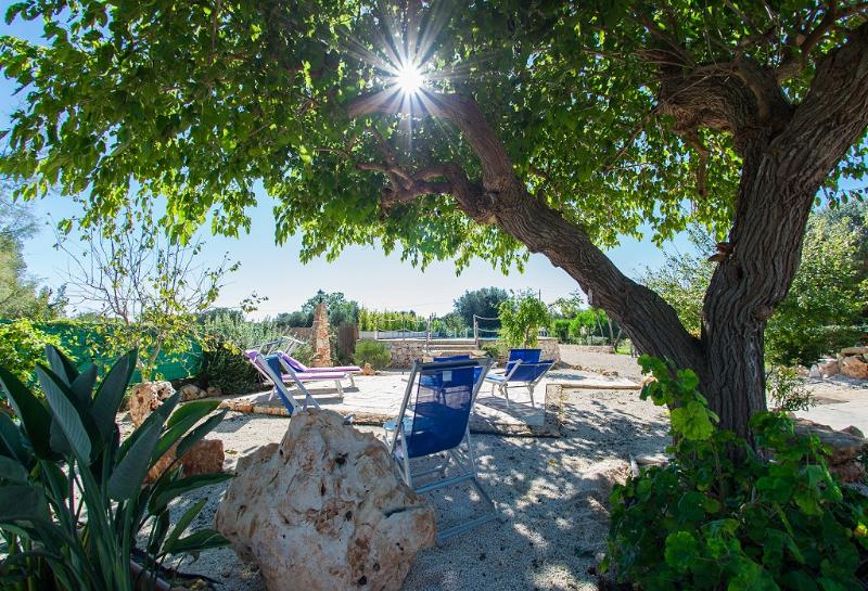 Trullo Mariposa nel salento, holiday rental in San Vito dei Normanni