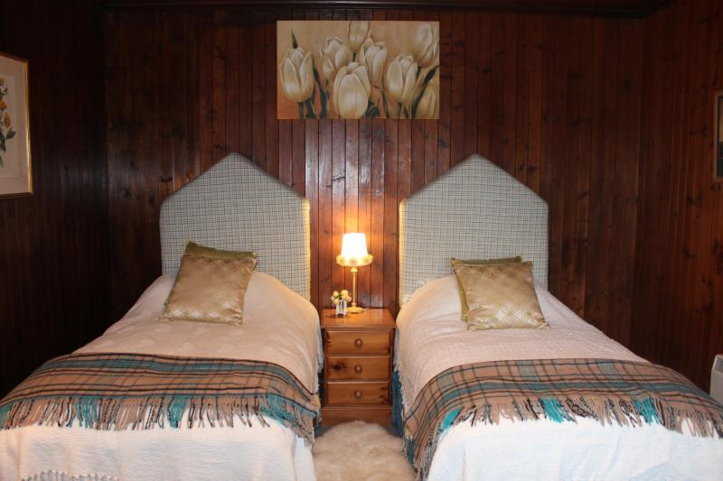 Large downstairs bedroom with twin or super king beds.