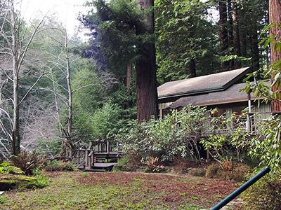 Sequoiatude, Outdoors in winter, Beautiful!