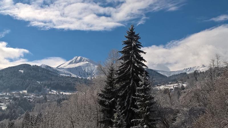 Sur votre droite, de l'appartement vue du Mont-Joly en hiver