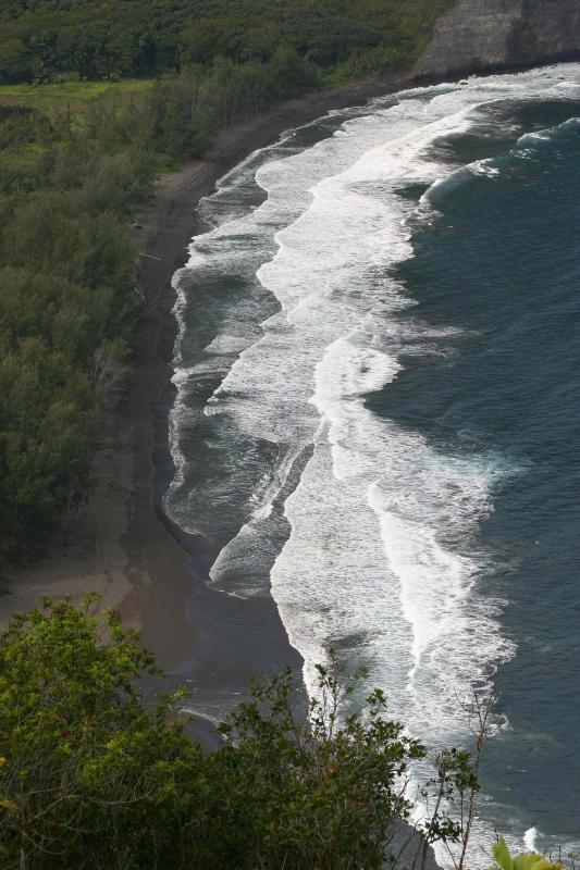 A view of the beach at Waipio Valley.