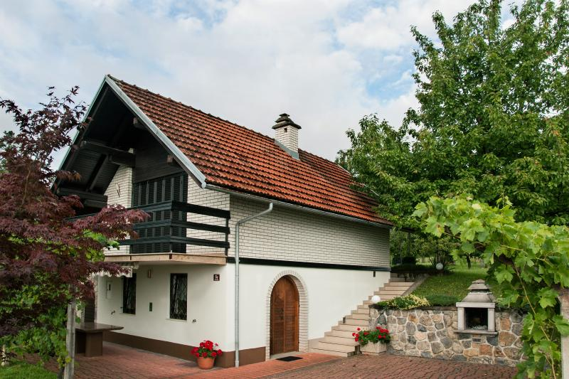 Vineyard cottage - Zidanica Drazumeric, holiday rental in Straza