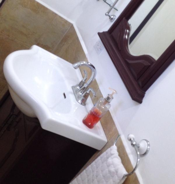 Bathroom sink and vanity