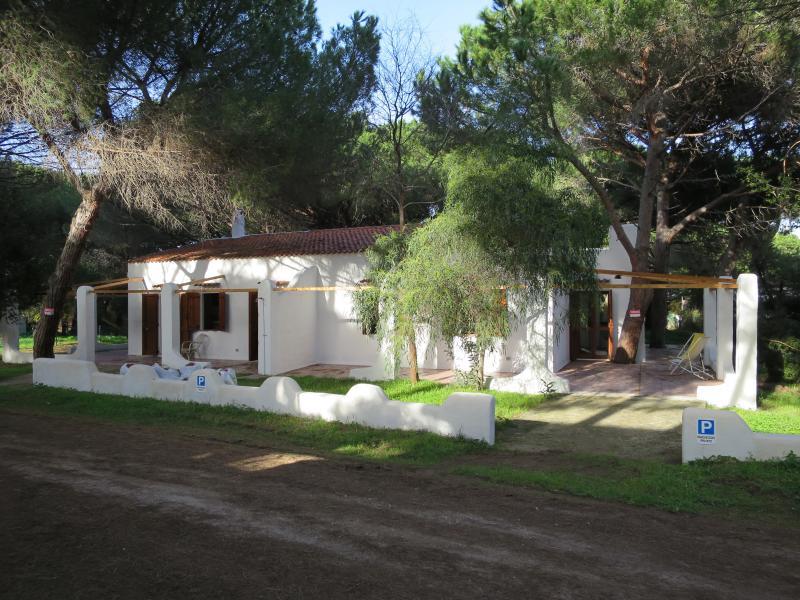 Villa BAY-A, 250 m dal mare in una pineta privata., holiday rental in La Muddizza