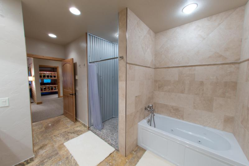 Huge shower and separate jetted tub