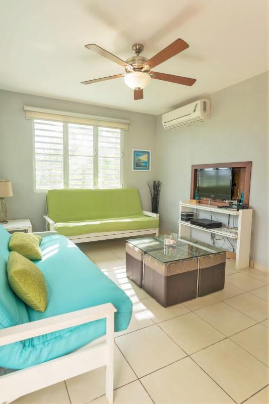 Living room with two full size futons, cable TV, a/c all over