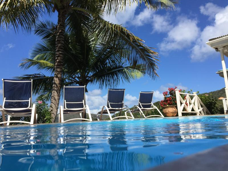 KAYAKS! - POOL! - AND THE BEST BEACH ON TORTOLA! 3 BEDROOM PRIVATE VILLA WITH AC, holiday rental in Little Trunk Bay