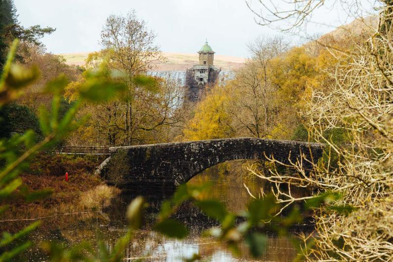 Explore the magnificent six Elan Valley dams and reservoirs. Only a short walk or cycle ride away.