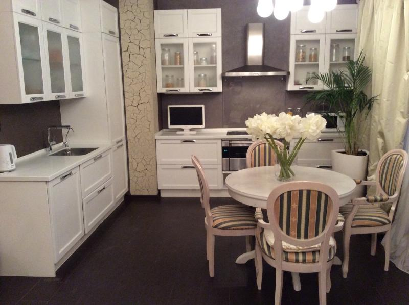 Apartment in Moscow, holiday rental in Monino