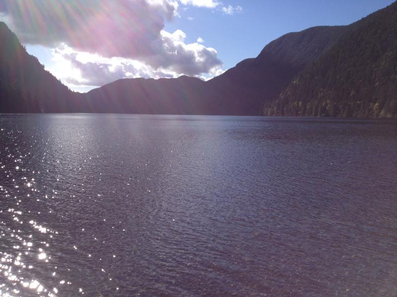 Make sure to stop at Cameron Lake on your way to Port Alberni, and Cathedral Grove