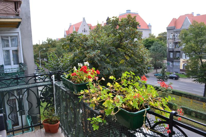 Sunny spacious luxury, City Center, holiday rental in Western Pomerania Province