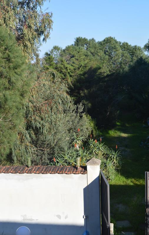 vista desde la segunda terraza