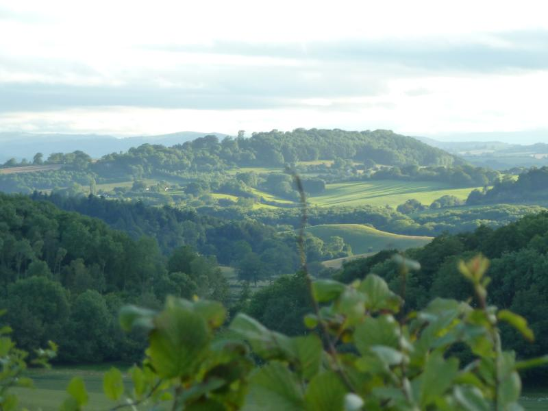 view from Glowson Wood road - just up the hill from Longwood Cottage