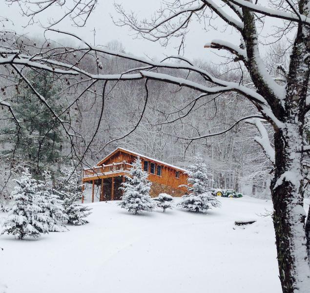 BirdTown, winter