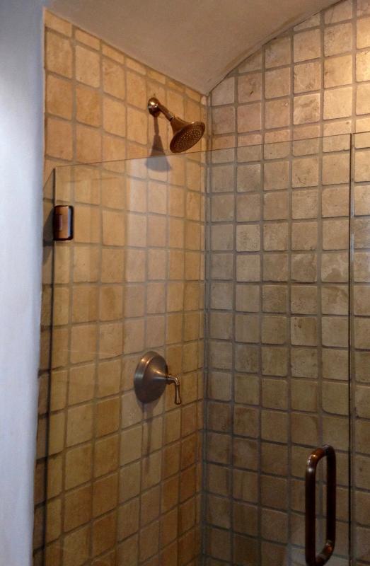 The master bathroom shower.