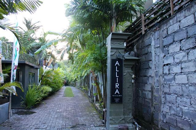 entry down beautiful driveway