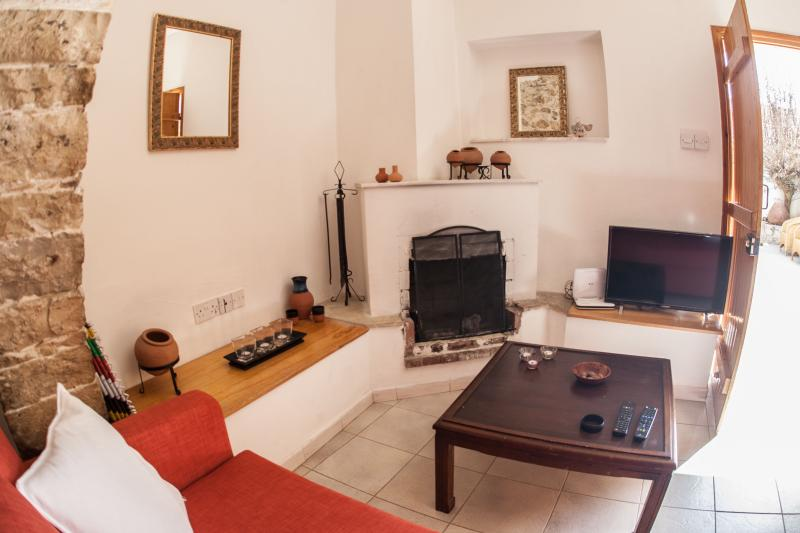 Living room area with fireplace, cable LCD TV and DVD player