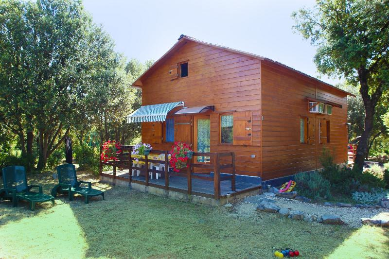 10MN d'ANDUZE CHALET CLIMATISE+PISCINE au calme, vacation rental in Generargues