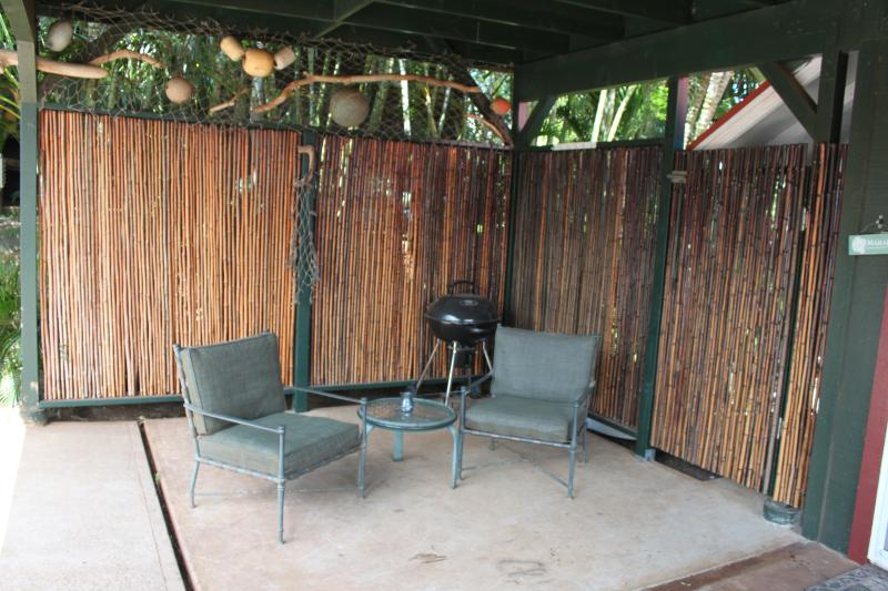 Seating and barbecue on out door lanai