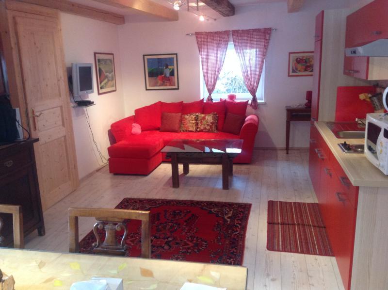 al vecchio fienile (famiglia Namer) songgiorno indimenticabile, vacation rental in Tarvisio