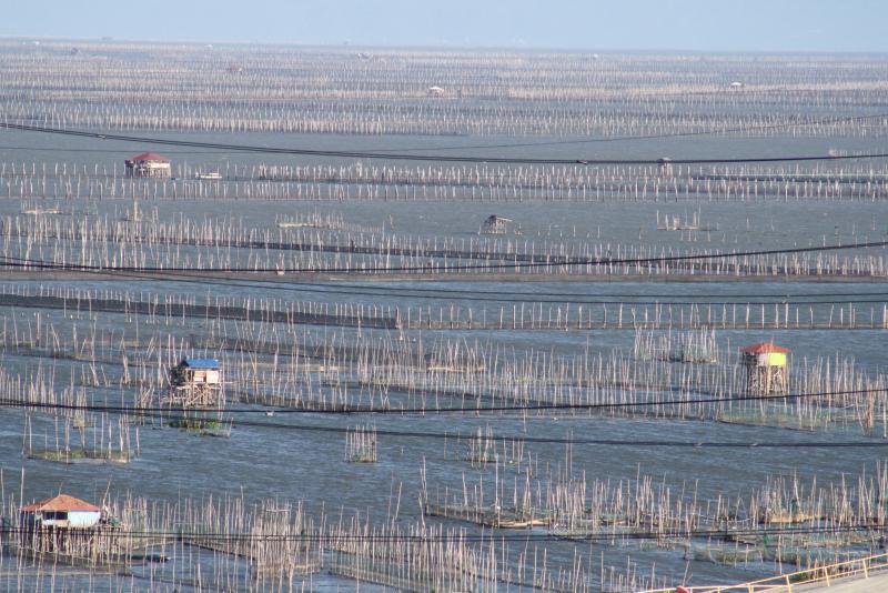 so many fish pens to feed so many Filipino people 100 million imagine that.