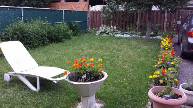 Here is our backyard, verry beautiful and peaceful